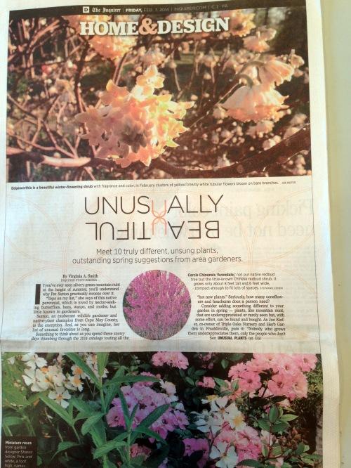 Philadelphia Inquirer 2/7/2014